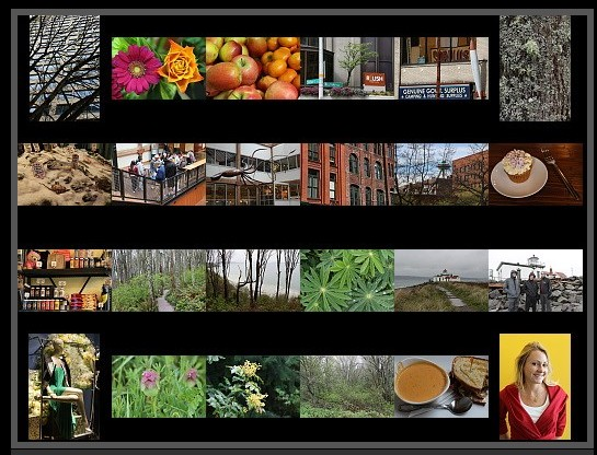 canon-eos-100d-sample-pictures