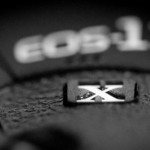 Canon EOS-1D X, 1D Mark IV and 1Ds Mark III Firmware Update Available for Download