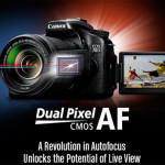 Canon Dual Pixel Live View AutoFocus