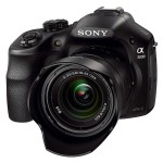 Sony A3000 Digital Camera Reviews Roundup