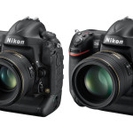 First Nikon D4s vs D4 High ISO Comparisons