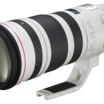 Canon EF 200-400mm f/4L IS 1.4x Review : Free eBook Download