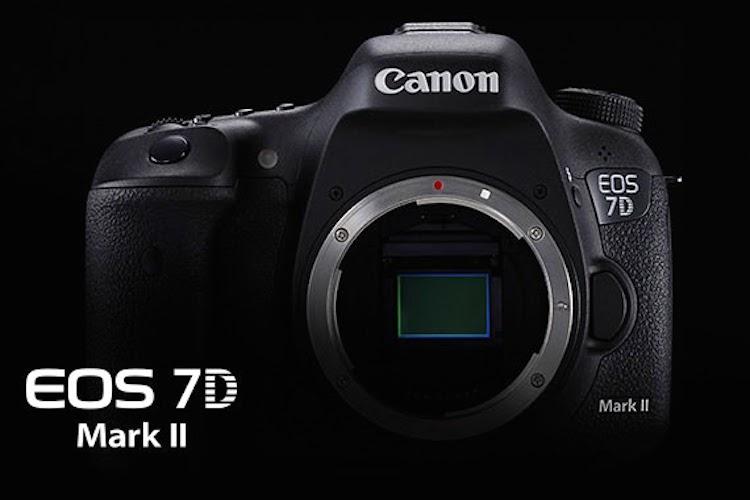canon-eos-7d-mark-ii-interview
