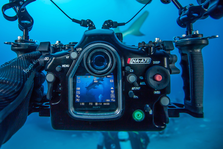 sony-a7ii-underwater-housing