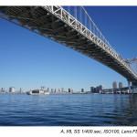 Sony FE 28mm f/2 Lens Sample Images