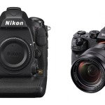 Nikon D5 vs Sony A7RII Comparison