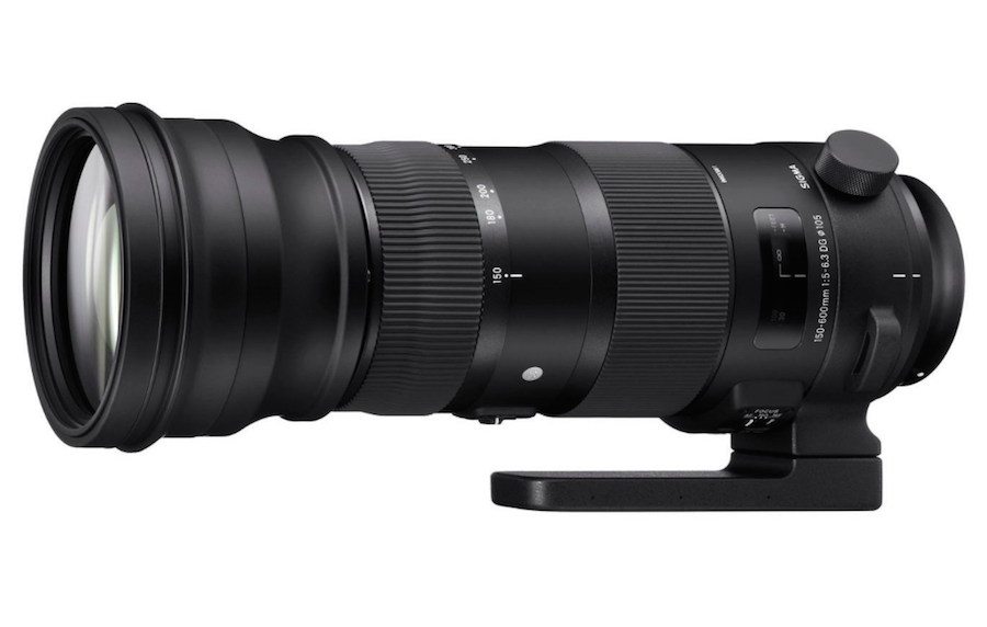 Sigma 150-600mm F5-6.3 S & C Lenses New Firmware Updates Released