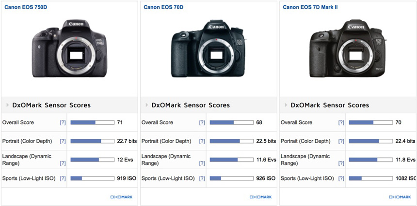 canon-eos-rebel-t6s-and-t6i-sensor-reviews-comparison