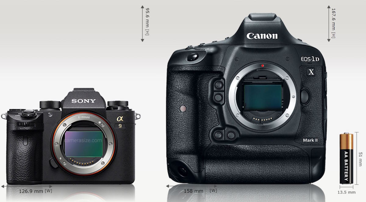 comparison of Sony A9 vs Canon 1D X II cameras