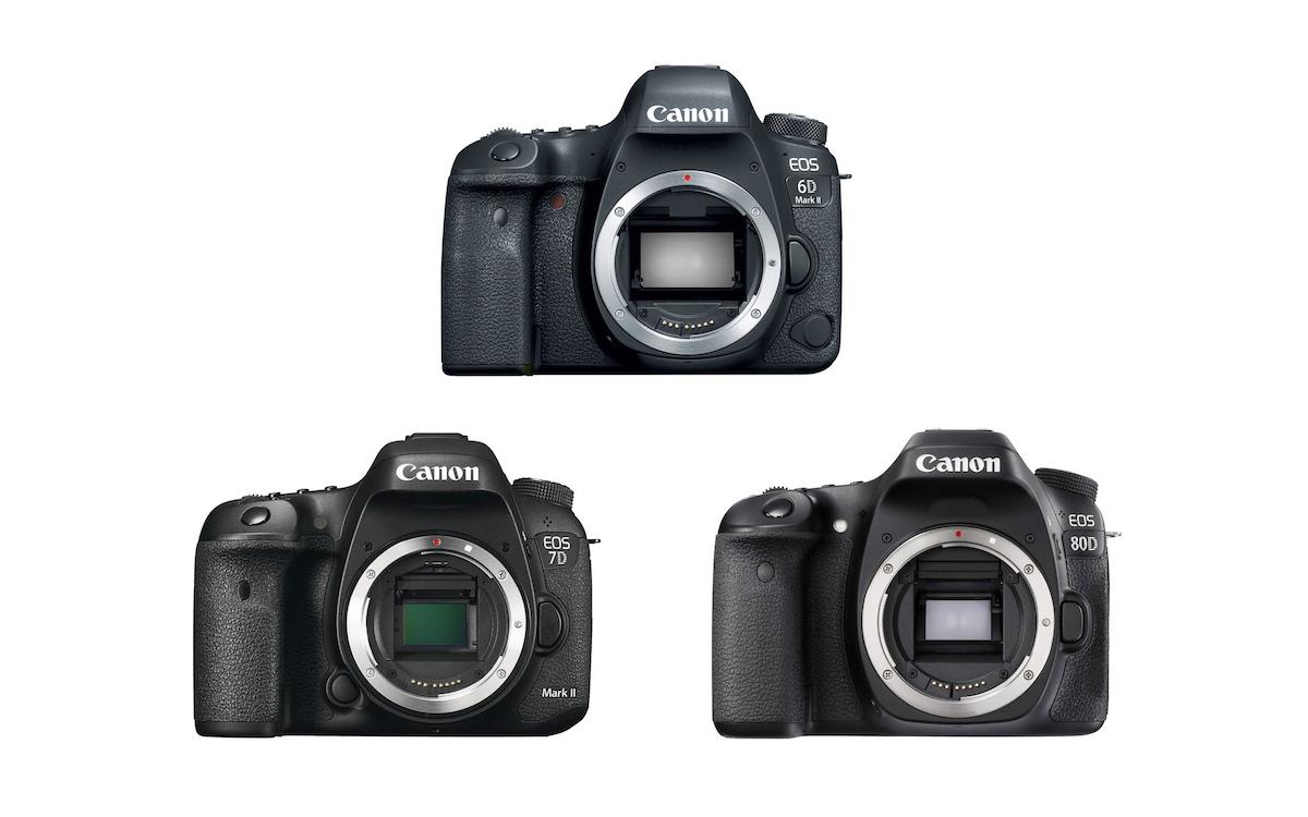 Canon 6D Mark II vs 7D Mark II vs 80D - Comparison