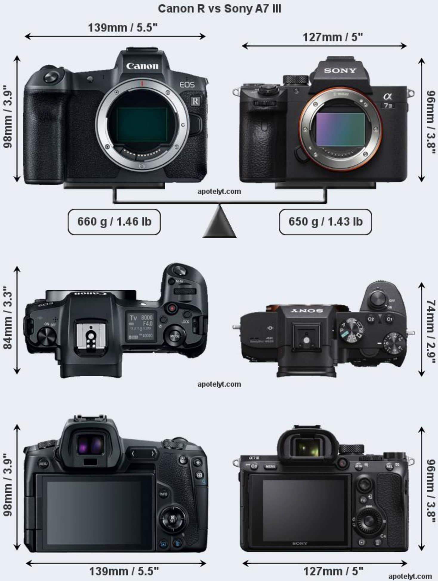 Canon EOS R vs Nikon Z6 vs Sony A7 III Size Comparison