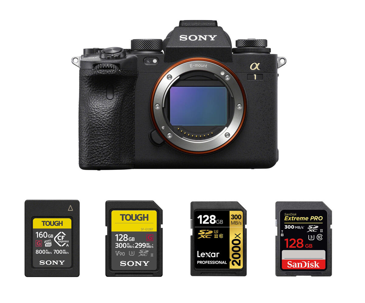 Recommended Memory Cards for Sony a1